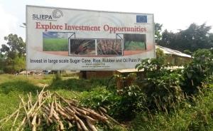 Pujehun Town SLIEPA advert