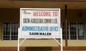 The investor: Socfin Agricultural Company (SL) Ltd (SAC)